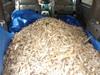 Mulch_pile_in_car