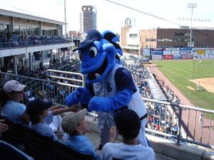 Bridgeport_bluefish_mascot_4