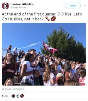 Rye Harrison round-up 2