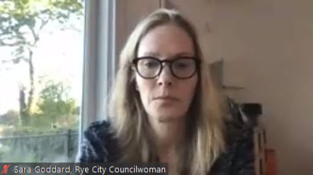 Councilwoman Sara Goddard on zoom
