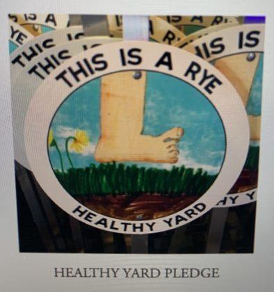 Rye Sustainability Committee Healthy Yard Pledge