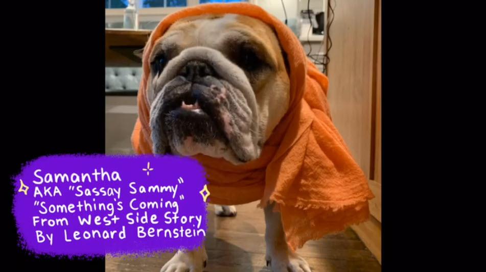 Rye Arts Center Samantha AKA Sassay Sammy singing Something's Coming from West Side Story by Leonard Bernstein.