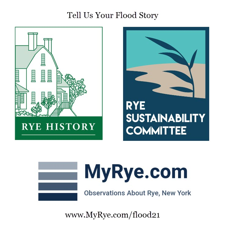 Tell us your flood story logo 2021